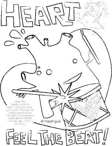 368x480 Respiratory System Coloring Page Circulatory System Coloring