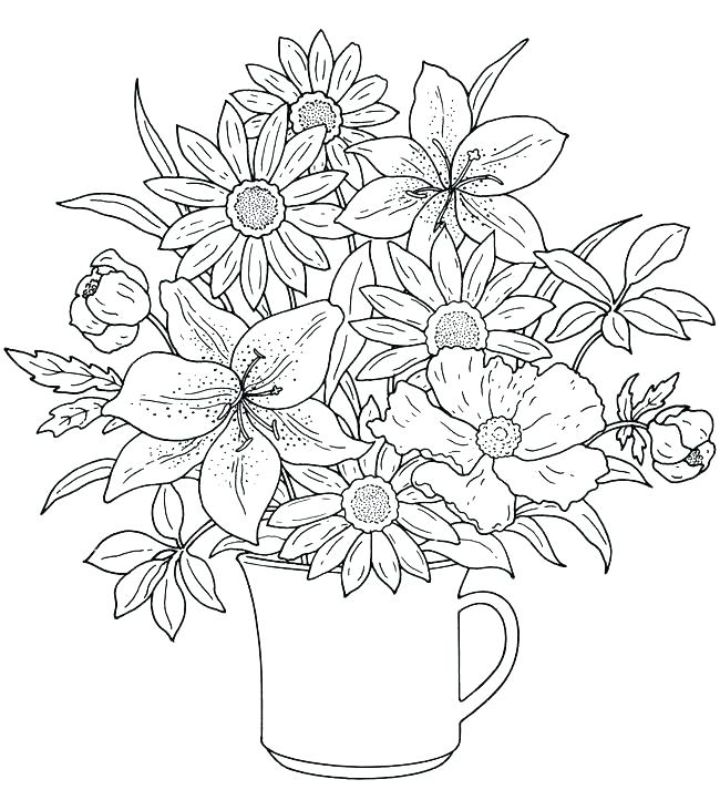 650x722 Flower Coloring Page Carnation Flower Coloring Page Flower Garden