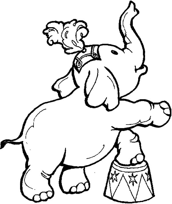 600x714 Circus And Carnival Animal Show Coloring Pages Best Place To Color