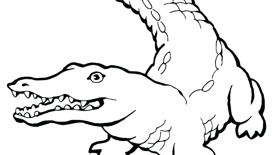 960x544 Coloring Page Alligator Alligator G Page Alligators Pages Look