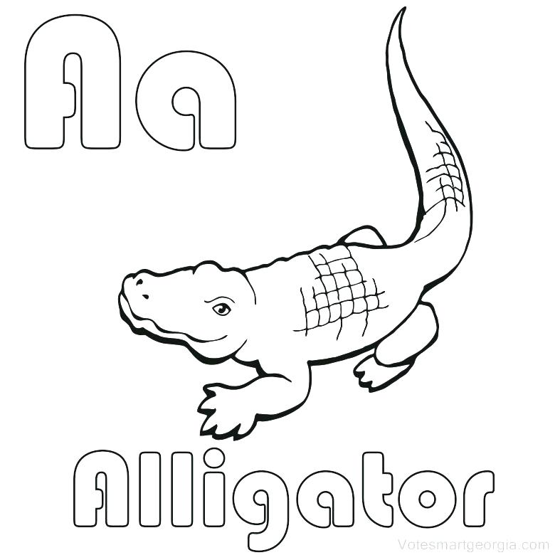 787x787 Alligator Coloring Page Alligator Coloring Page Cool Alligator