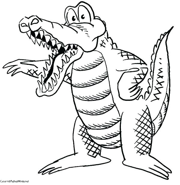 600x616 Gator Coloring Pages Cartoon Crocodile Coloring Pages Gator