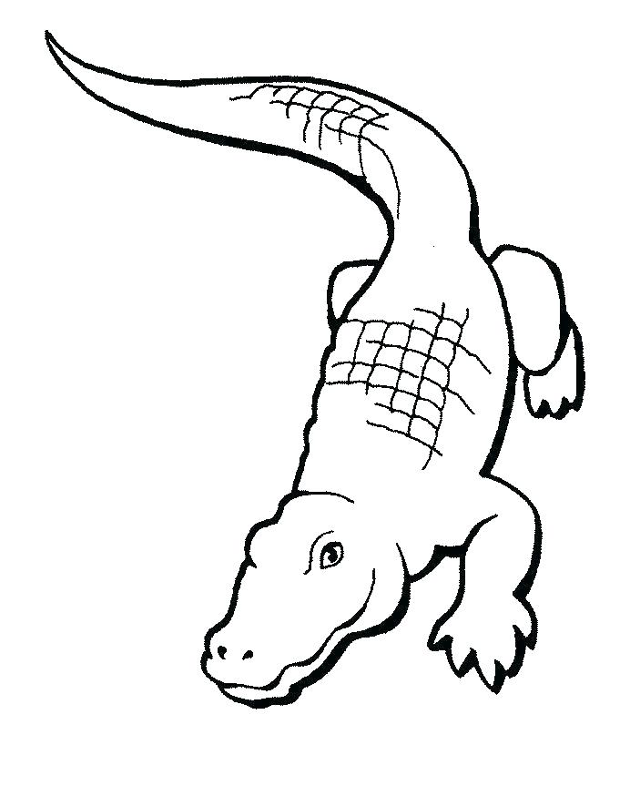 692x863 Alligator Coloring Page Crocodile Coloring Pages Crocodile
