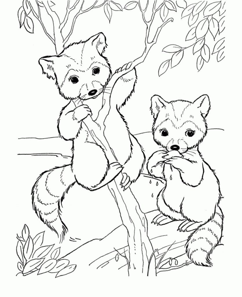 836x1024 Awesome Baby Animals Adult Coloring Pages Collection Printable