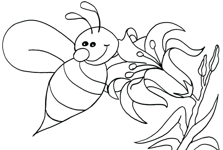 900x607 Honey Bee Coloring Pages Also Honey Bee Coloring Pages Collecting