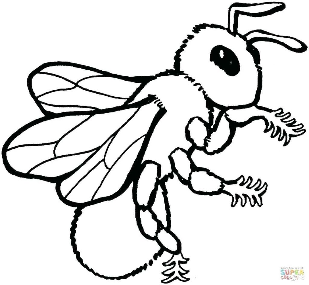 1024x944 Coloring Pages Bumble Bee Coloring Page Excellent Template