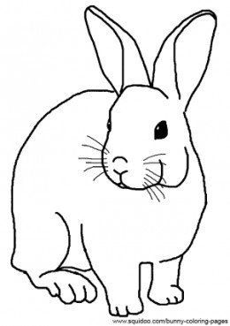 Cartoon Bunny Coloring Pages
