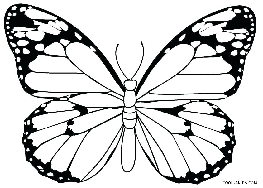 844x603 Coloring Page Of Butterfly Simple Butterfly Coloring Pages Cartoon