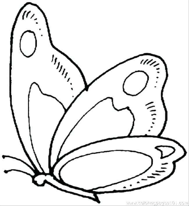 650x706 Coloring Pages Of Butterfly