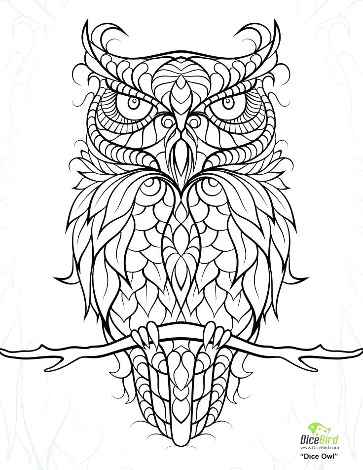 736x952 Cartoon Owl Coloring Pages Free Owl Coloring Pages Cute Owl