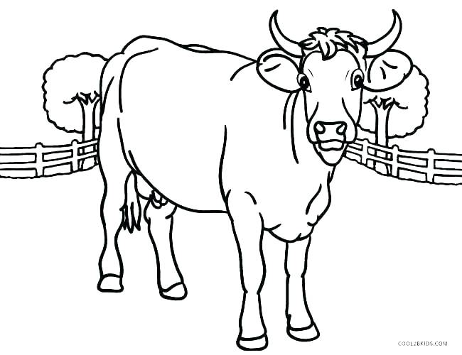 650x500 Cow Coloring Pages Coloring Book Cow Coloring Pages Cow Coloring