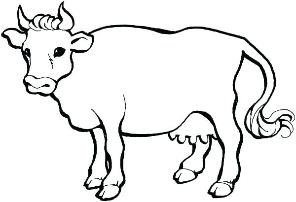 600x410 Cartoon Cow Coloring Pages Coloring Pages Of Cows Cow Coloring