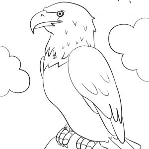 300x300 Coloring Pages American Eagle Best Of Free Printable Bald Eagle