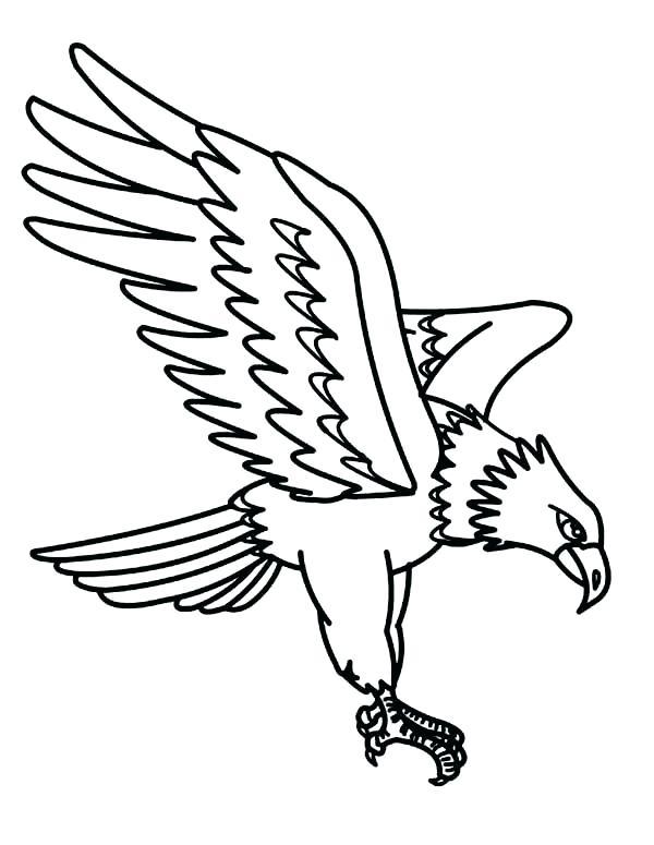 600x775 Eagle Coloring Pages Eagle Color Page North Largest Raptor Golden