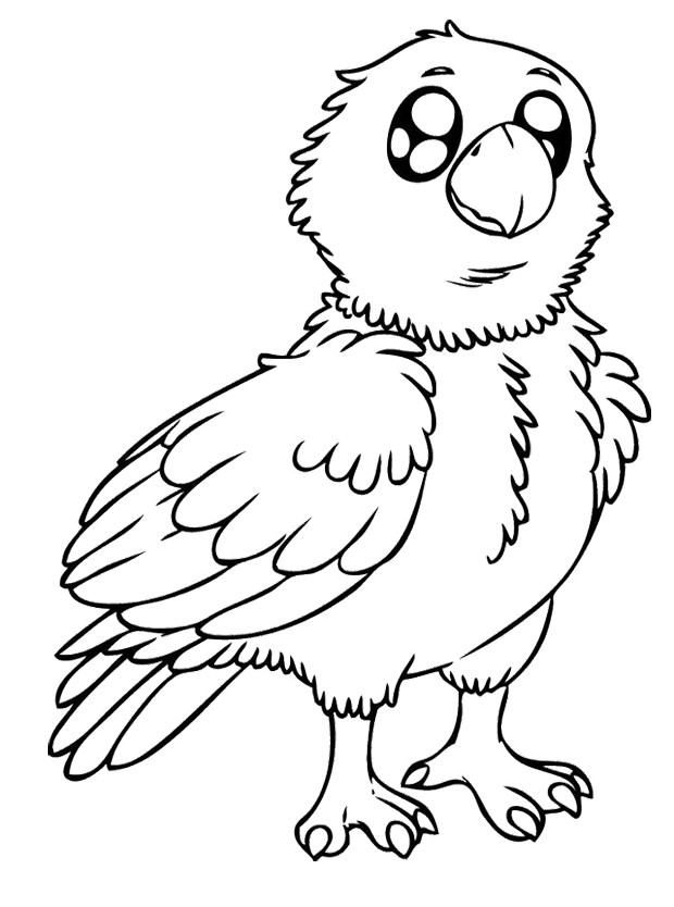 620x834 Baby Eagle Coloring Pages Kids Coloring Pages Eagle