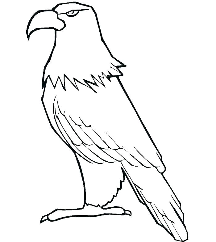 700x783 Eagles Football Coloring Pages Harpy Eagle Colouring Pages Cartoon