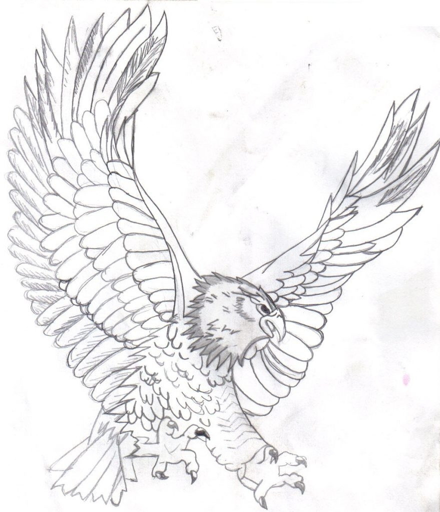 879x1024 Bald Eagle Coloring Page With Cartoon Amazing Pages Acpra