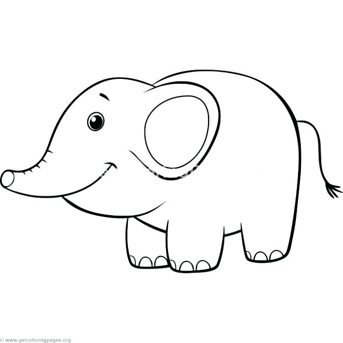 700x700 Elephant Color Pages Elephant Color Pages Cute Elephant Coloring