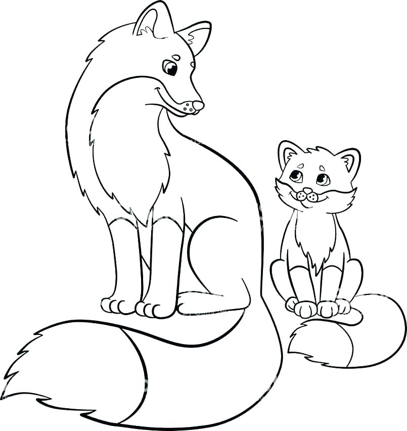 805x852 Red Fox Coloring Pages Red Fox Coloring Pages Coloring Pages