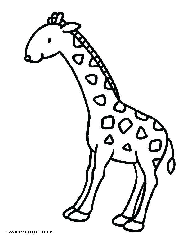 590x769 Giraffe Coloring Pages Cartoon Giraffe Coloring Page Cute Giraffe