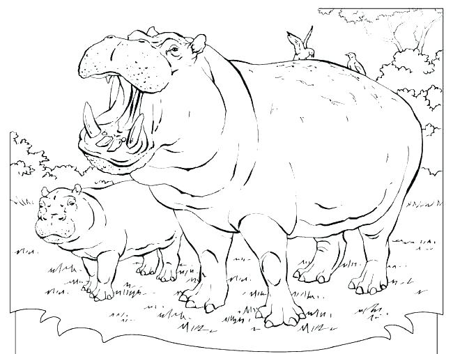 650x508 Hippo Coloring Pages Cartoon Stork Delivering Baby Hippo Coloring