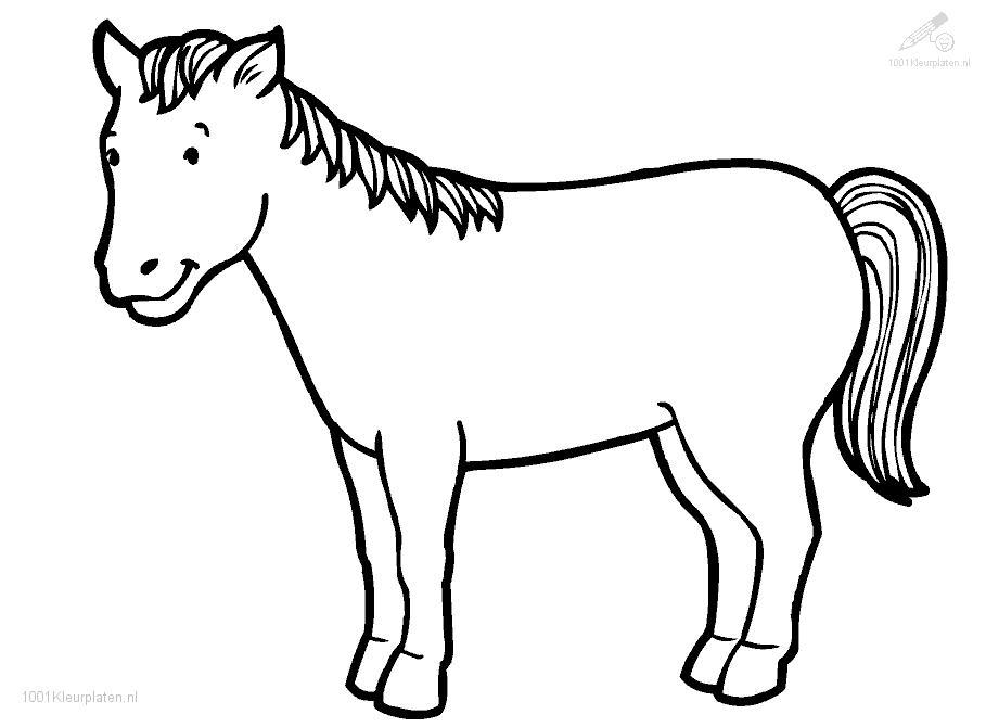 909x670 Cute Horse Coloring Pages