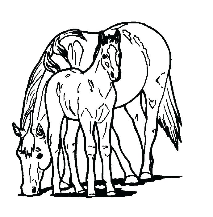690x705 Free Horses Coloring Pages For Kids Printable Coloring Sheets