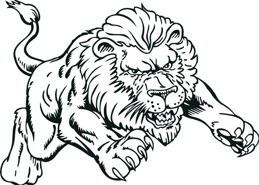 900x645 Baby Lion Coloring Pages Baby Lion Free Printable Lion Coloring