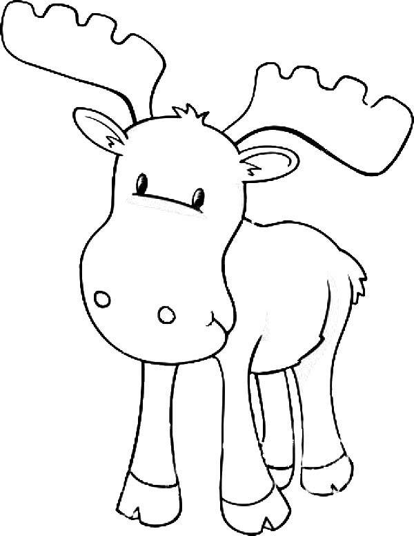 600x776 Moose, Baby Moose Coloring Page Preschool Moose