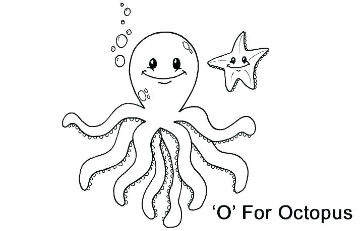 720x460 Coloring Pages Octopus Octopus Coloring Page For Preschoolers