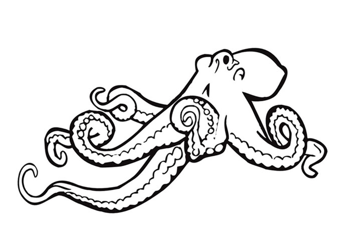 700x500 Octopus Coloring Page Printable Free Coloring Pages