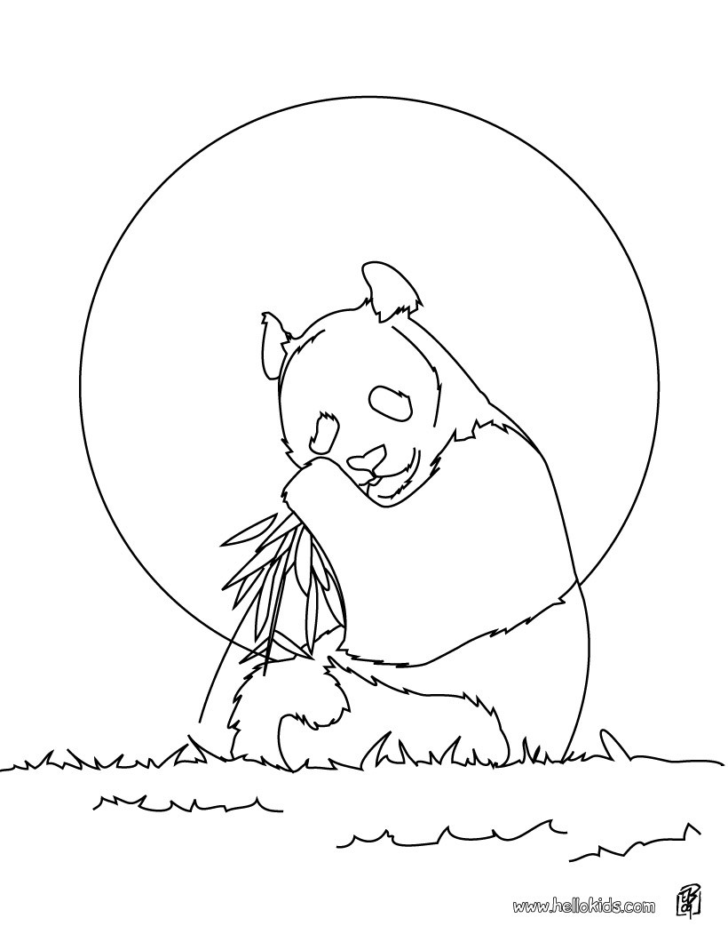 820x1060 Giant Panda Coloring Pages Free For Page
