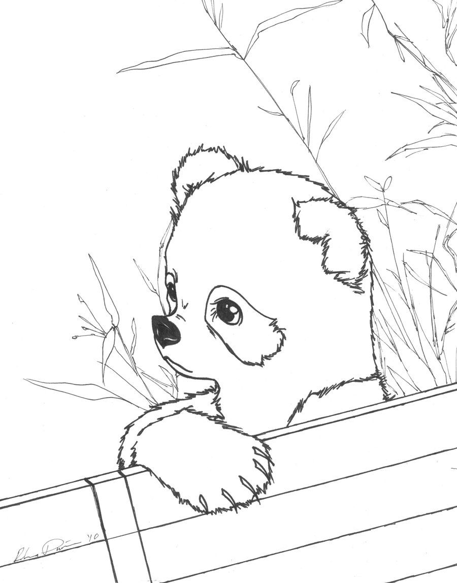 900x1148 Cute Baby Panda Coloring Pages, Printable Cute Baby Panda Coloring