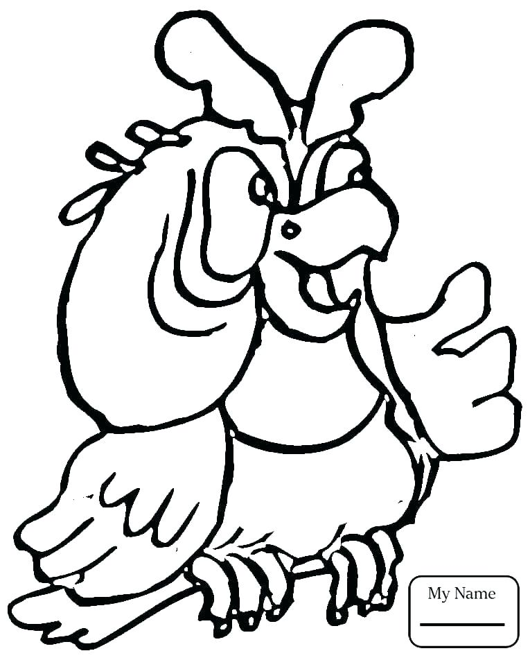 765x952 Parrot Coloring Page Little Parrot Coloring Page Pirate Parrot
