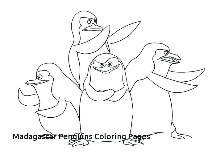 700x500 Penguin Coloring Pages For Those Have Happy Feet Emperor Penguin
