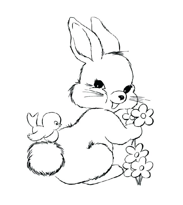 636x713 Coloring Pages Of Cute Bunnies Bunnies Coloring Pages Bunnies