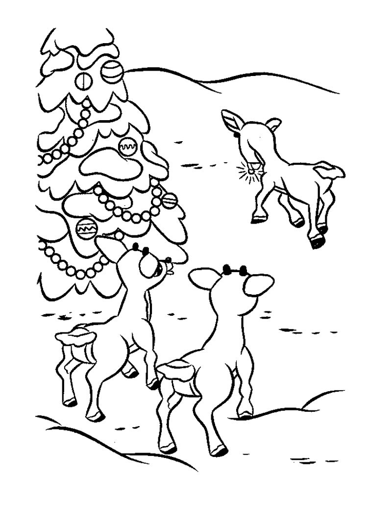 800x1034 Reindeer Coloring Pages