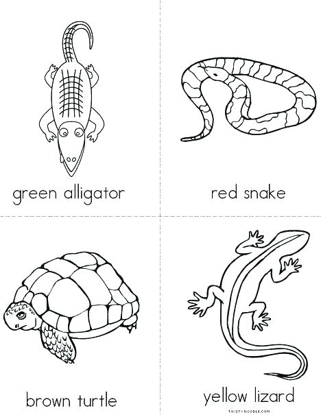 468x605 Reptile Coloring Page Reptiles Coloring Pages Cartoon Snake