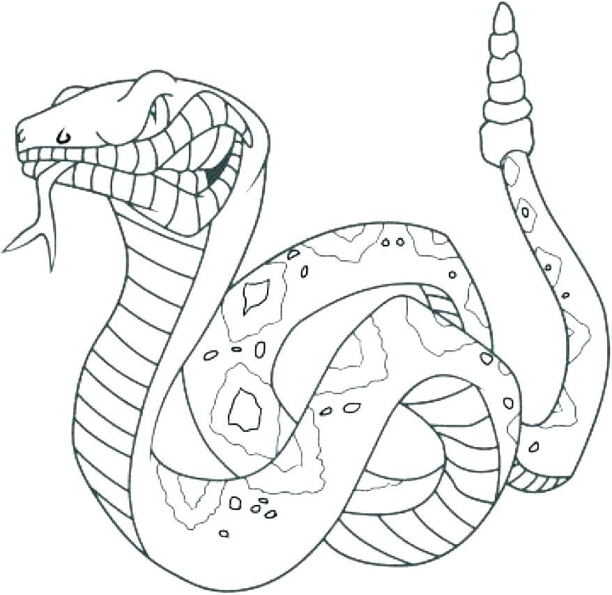 878x853 Snake Coloring Pages Free Snake Coloring Pages Cobra Snake