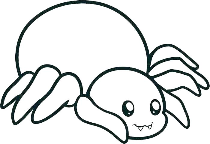 700x480 Spider Web Coloring Pages Cartoon Spiders Pictures Spider Web