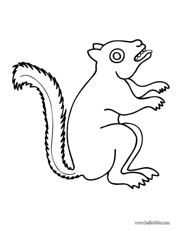 728x941 Printable Squirrel Coloring Pages For Kids Page Animal Cartoon