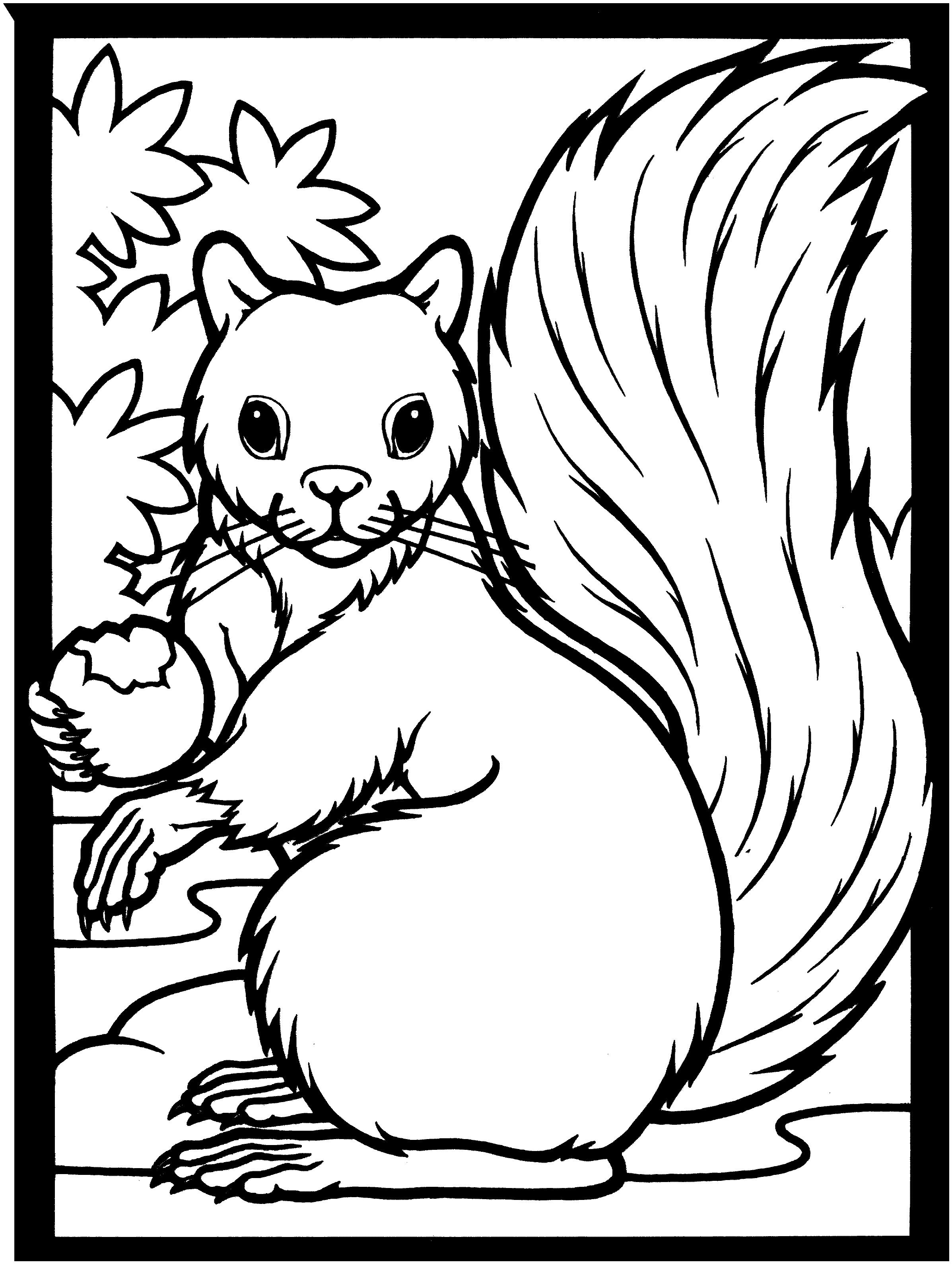 2394x3177 Unique Squirrel Coloring Page Design Printable Coloring Sheet