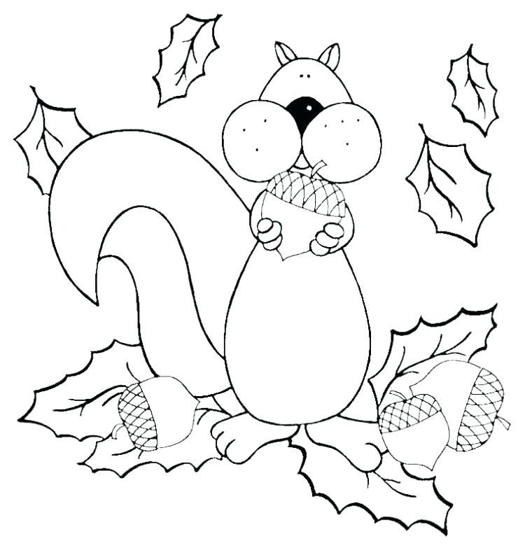 750x783 Squirrel Coloring Pages