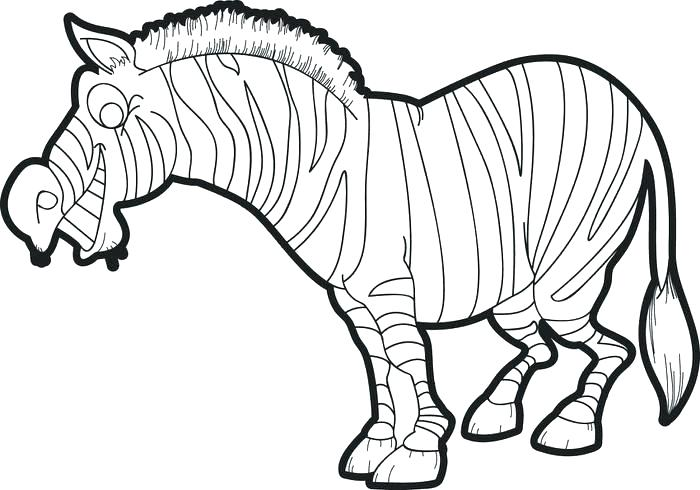 700x490 Funny Zebra Coloring Pages Without Stripes A Baby Little Page