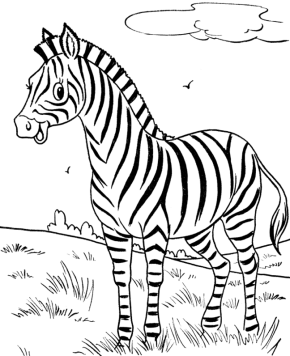 290x356 Zebra Happy Zebra Coloring Page, Cartoon Zebra Coloring Page