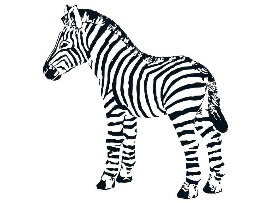 940x705 Zebra Coloring Pages