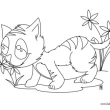 220x220 Cat And Mouse Coloring Pages