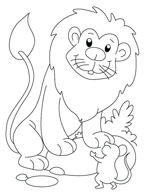 478x640 Mice Coloring Pages Cat And Mouse Coloring Pages Mice Coloring