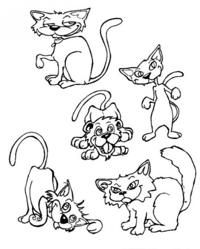 700x871 Twin Cats And Mouse Coloring Page Animal Pages