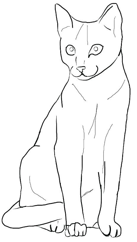 462x812 Cat And Mouse Coloring Pages Free Printable Sheets For Kids